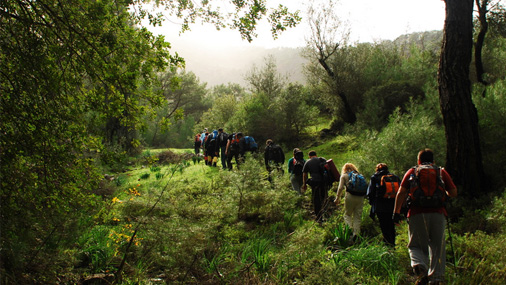 Walking & Hiking Tours